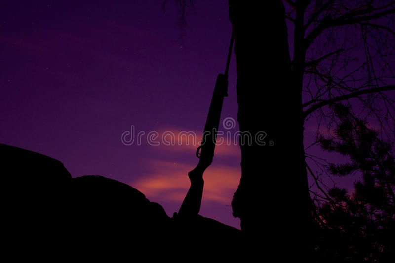 Rifle leaning against tree royalty free stock photo
