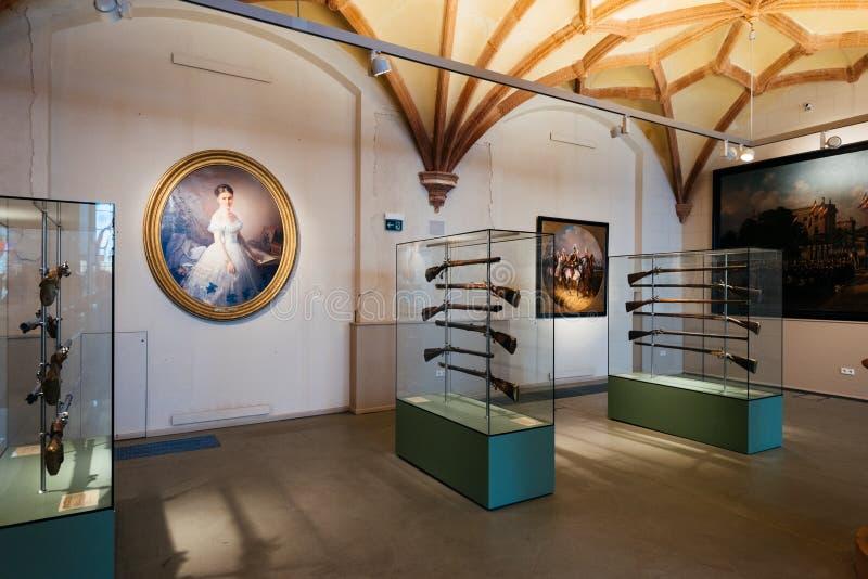 Rifles en el museo del castillo de Schwerin imagen de archivo