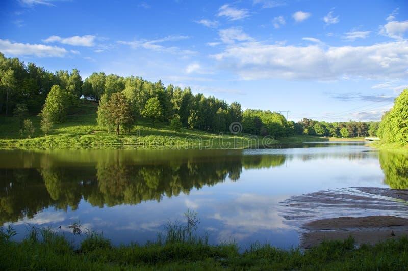 Riflessione blu in fiume alla foresta di estate fotografia stock