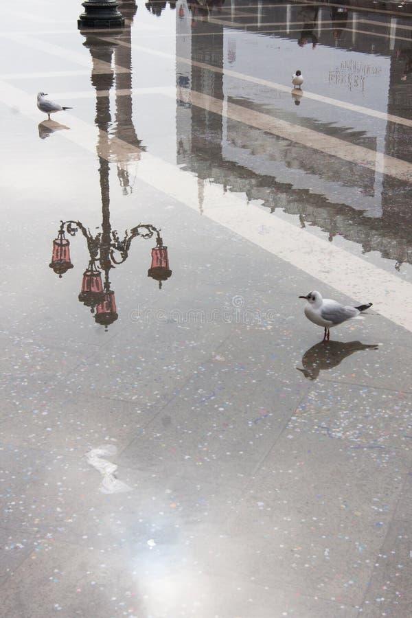 Riflessione d'annata del palo della luce nel quadrato di San Marco durante l'Aqua Alta, Venezia, Italia immagine stock libera da diritti