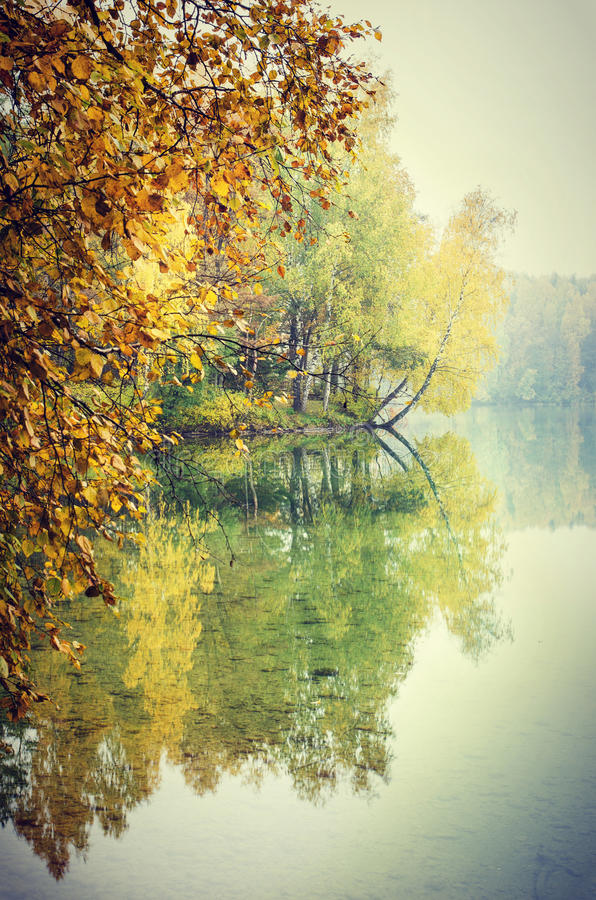 Riflessione degli alberi di caduta fotografia stock