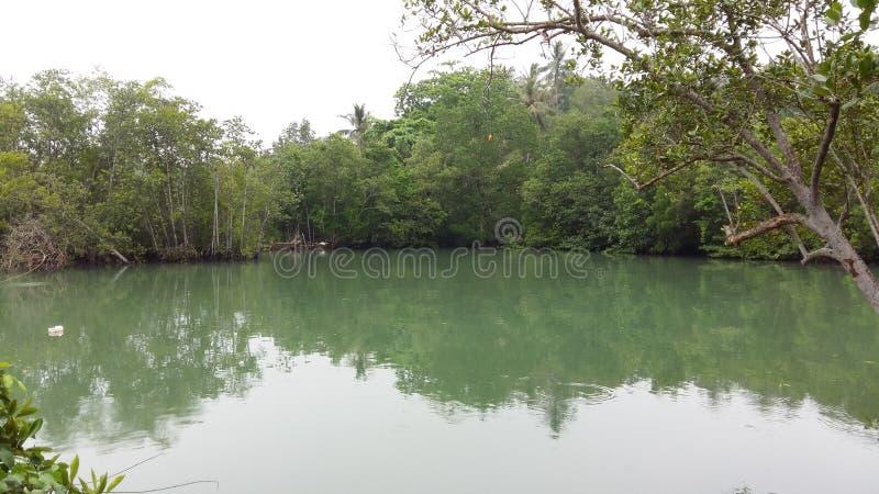 Riflessione del corpo dell'acqua del ubin di Singapore fotografie stock libere da diritti
