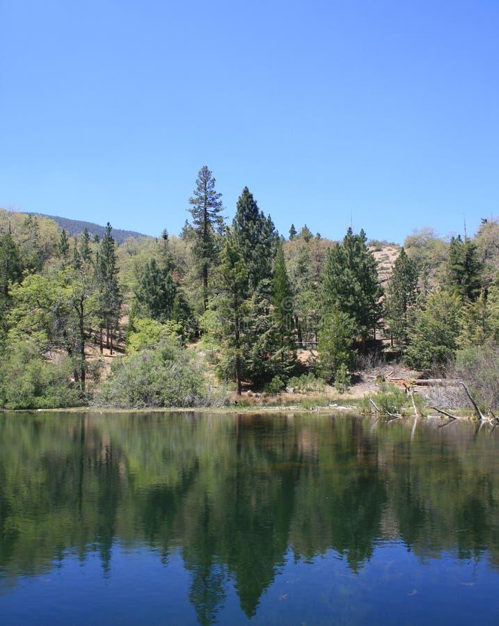 Riflessione del lago Jenks immagine stock