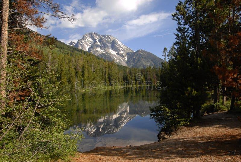 Riflessione del lago leigh immagini stock