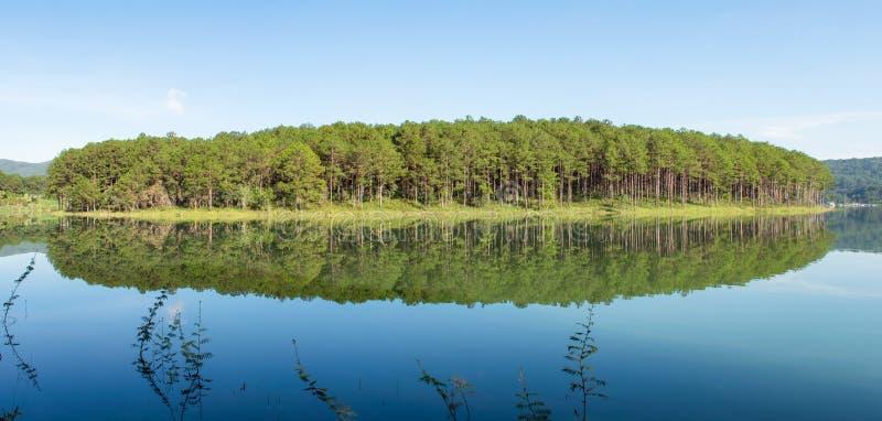 Riflessione dell'isola dell'abetaia sul lago con aria fresca e la natura, panorama di versione fotografie stock