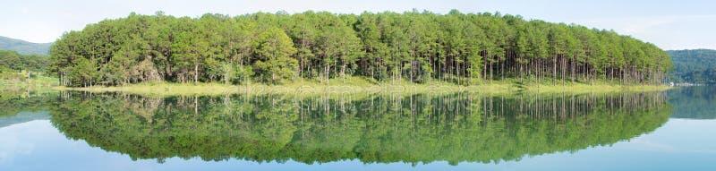 Riflessione dell'isola dell'abetaia sul lago con aria fresca e la natura, parte 2 di panorama di versione immagine stock libera da diritti