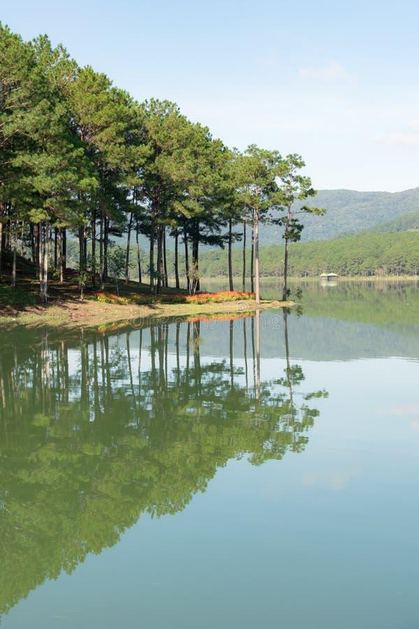 Riflessione dell'isola dell'abetaia sul lago con la parte 2 della natura e dell'aria fresca immagine stock