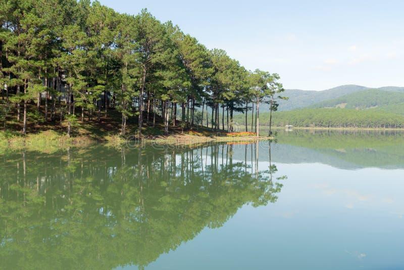 Riflessione dell'isola dell'abetaia sul lago con la parte 3 della natura e dell'aria fresca immagini stock libere da diritti