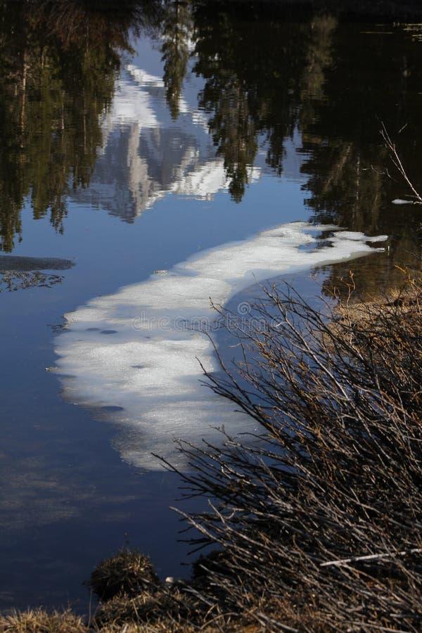 Riflessione della guglia & dello stagno dell'insenatura dell'orso fotografie stock libere da diritti