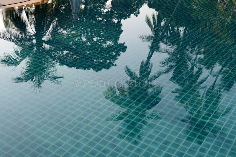 Riflessione delle palme e degli ombrelli di spiaggia nello stagno di mattina immagini stock libere da diritti