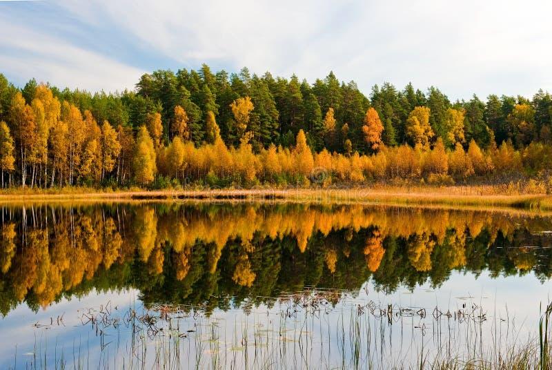 Riflessione di autunno fotografia stock libera da diritti