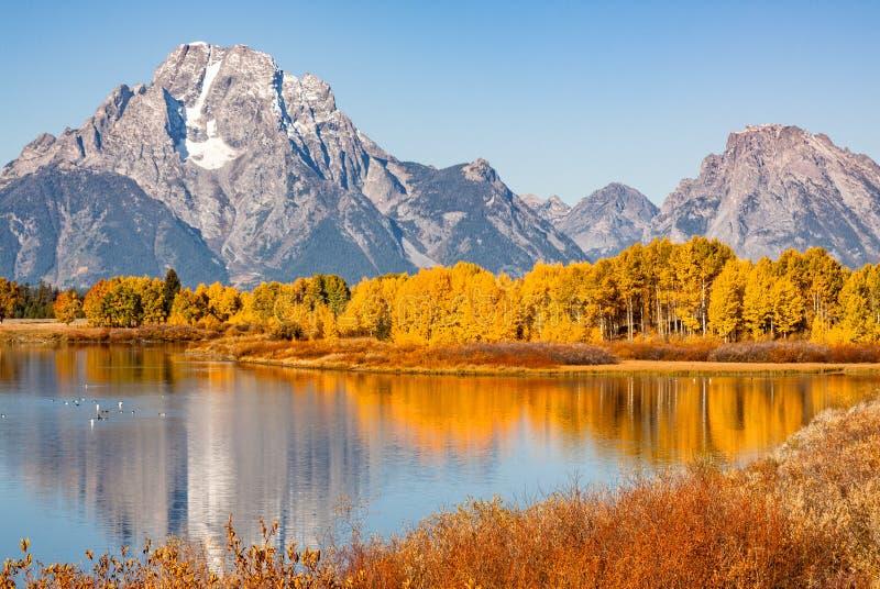 Riflessione di caduta di Teton alla curvatura di Oxbow immagine stock libera da diritti