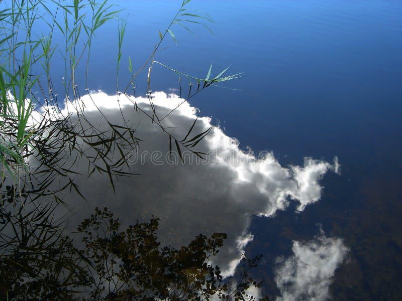 Riflessione di una nube in acqua fotografia stock