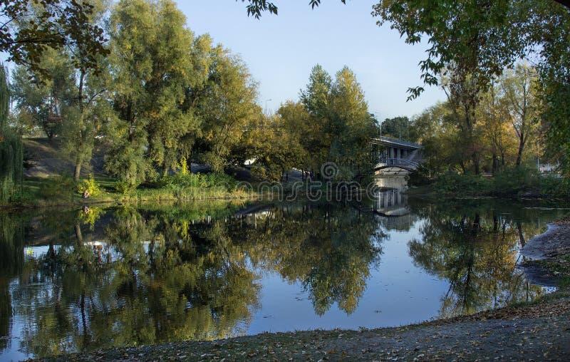Riflessione naturale del fondo di autunno degli alberi, dei cespugli e del ponte nel fiume fotografie stock