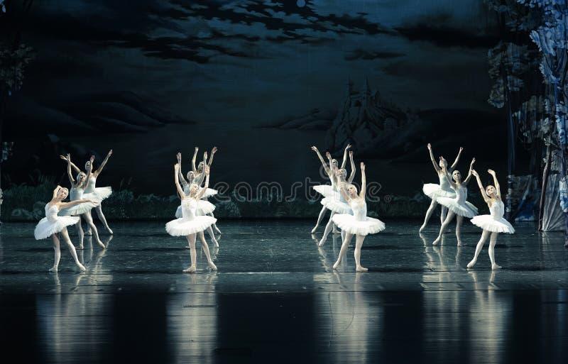 Riflessione nel lago swan di acqua balletto immagine stock libera da diritti