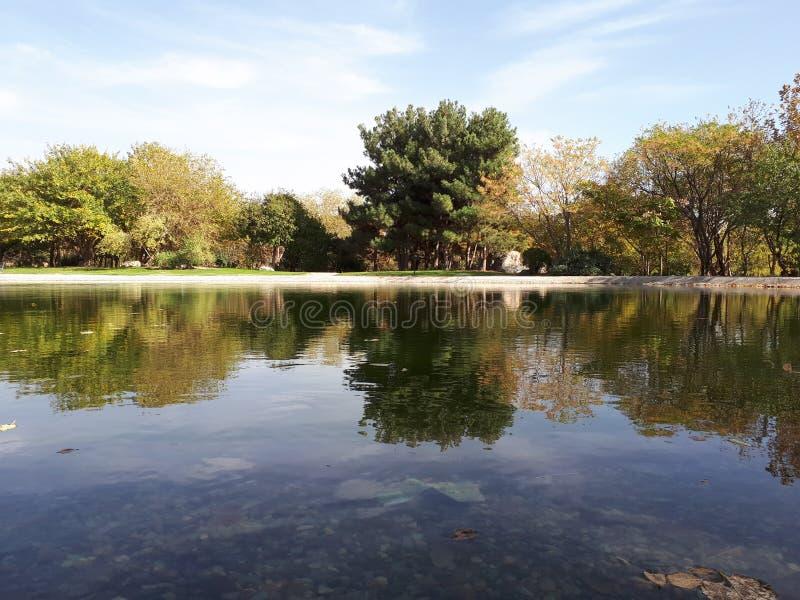 Riflessione nel lago fotografia stock