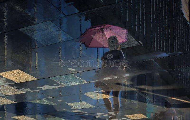 Riflessione nell'acqua dopo la pioggia fotografia stock libera da diritti