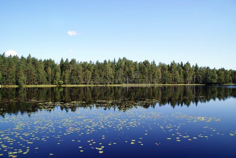 Riflessioni blu del lago fotografia stock libera da diritti