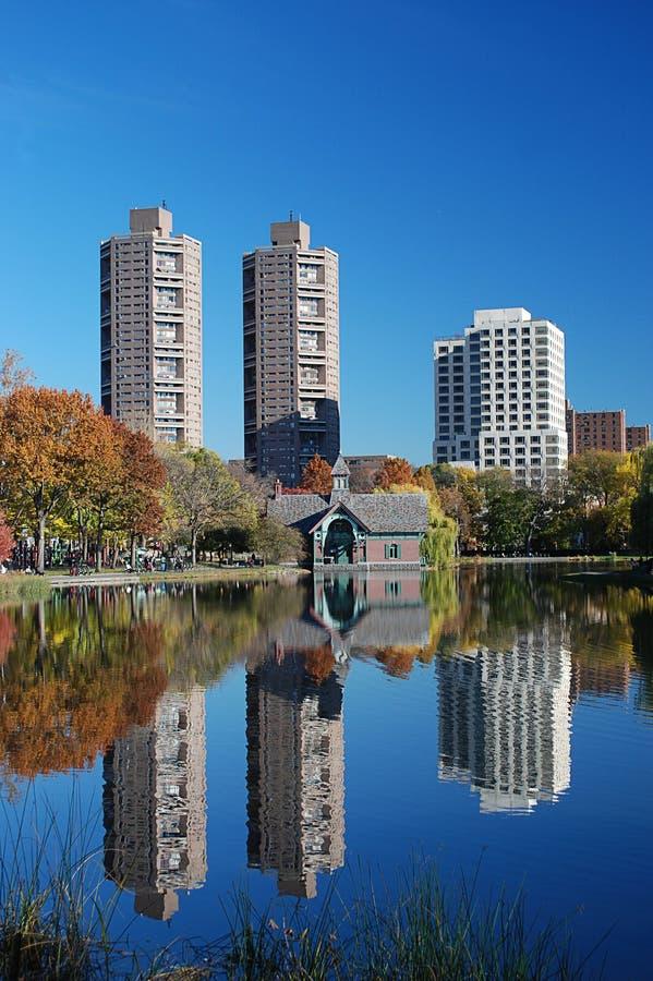 Riflessioni in Central Park fotografia stock libera da diritti