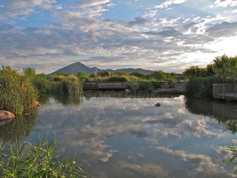Riflessioni, Clark County Wetlands Park, Las Vegas, Nevada fotografia stock