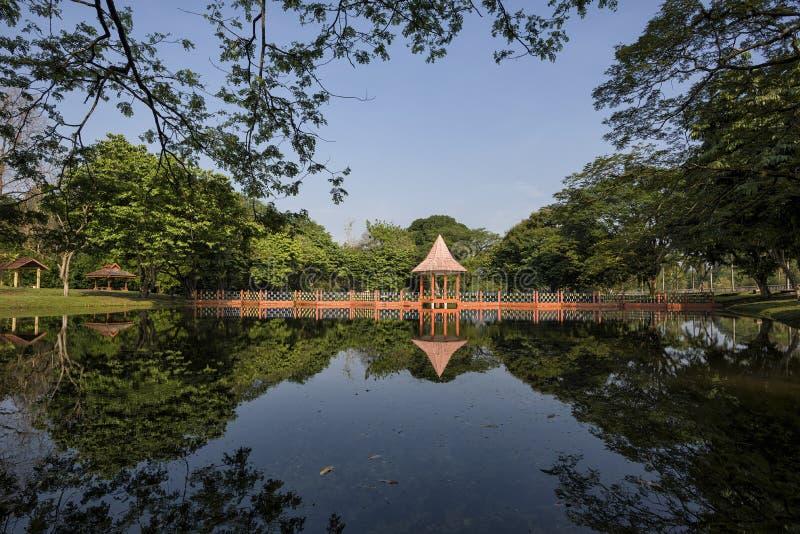 Riflessioni dell'acqua a Taman Tasik, in Taiping, Perak, Malesia immagini stock libere da diritti