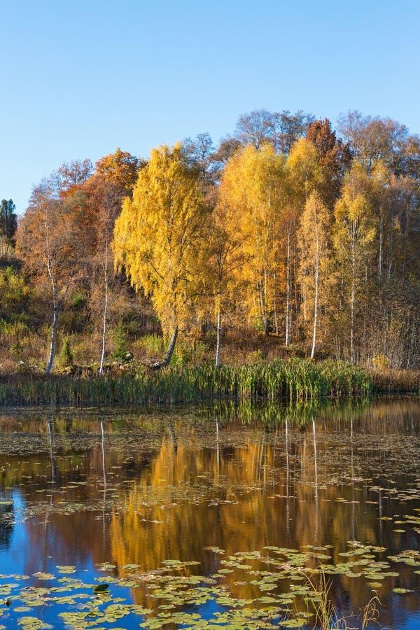 Riflessioni di autunno nell'acqua immagini stock