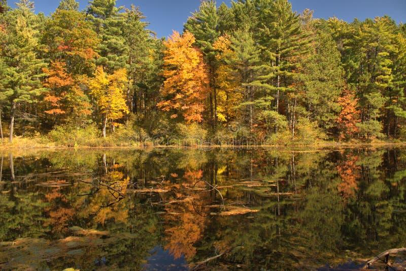 Riflessioni di caduta del lago mirror fotografie stock