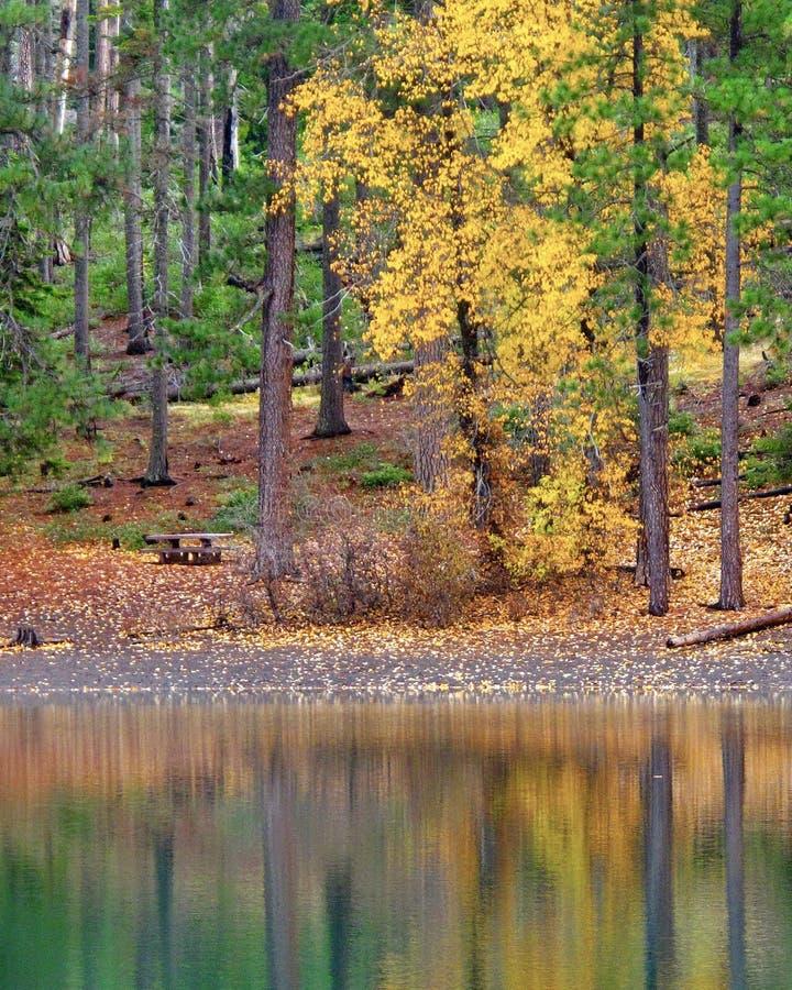 Riflessioni di caduta in lago fotografia stock libera da diritti