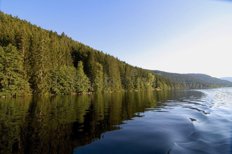 Riflessioni di legni in Titisee immagini stock libere da diritti