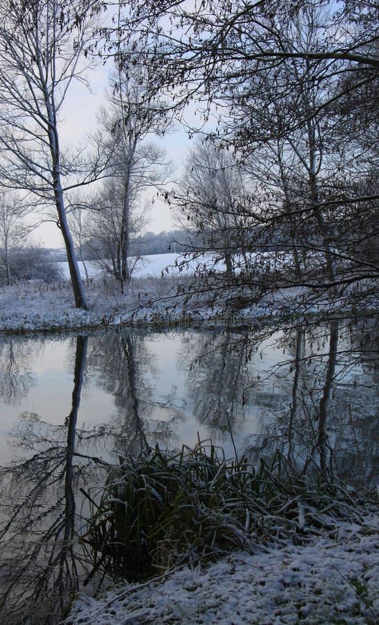 Riflessioni nello stour del fiume fotografia stock