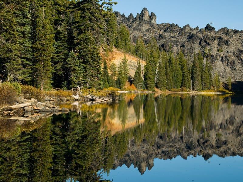 Riflessioni rocciose di legni fotografia stock libera da diritti