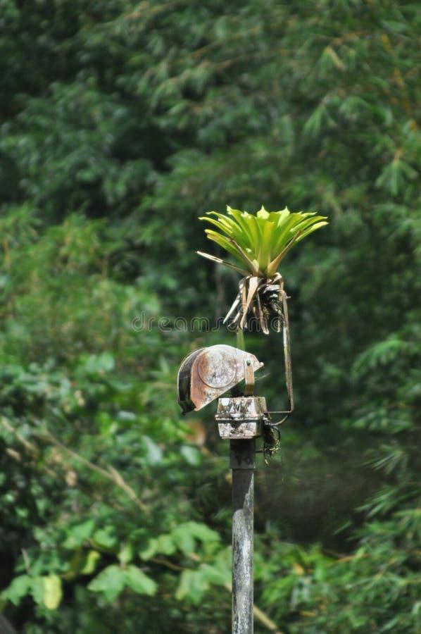 Riflettore arrugginito di sorveglianza nascosto nella giungla con una pianta g fotografia stock