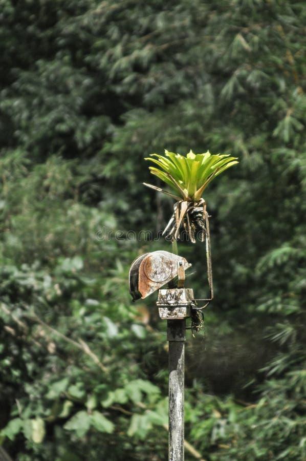 Riflettore arrugginito di sorveglianza in una regolazione abbandonata della giungla fotografia stock libera da diritti