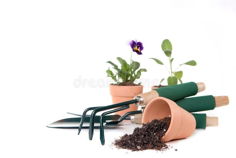 Rifornimenti di giardinaggio con lo spazio della copia immagini stock