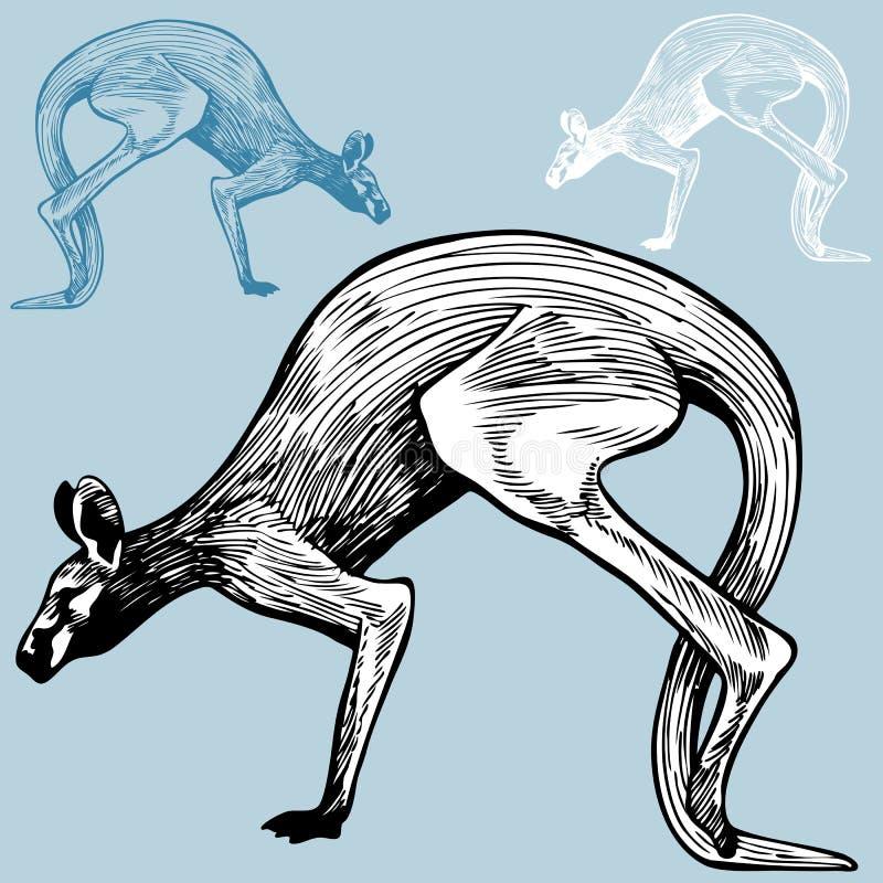 Riga arte del canguro immagine stock