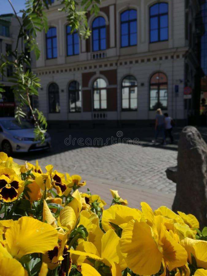 Riga dans le mouvement photo libre de droits