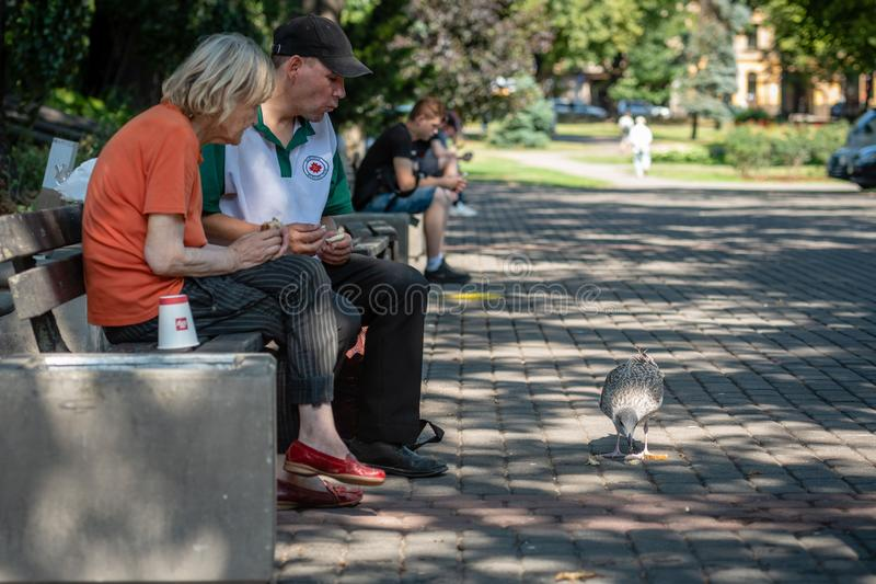 RIGA, LATVIA - JULY 31, 2018: A couple of older people sitting in the city park on a bench and feeding the gull. stock photography