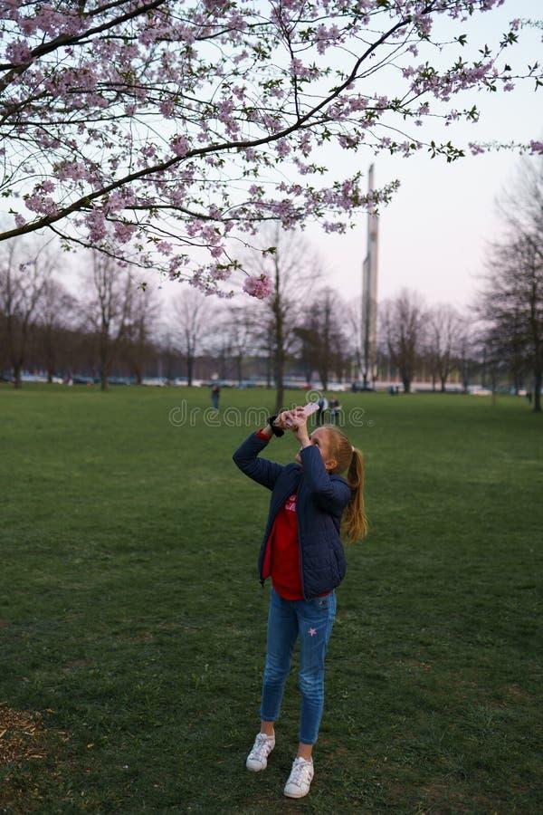 RIGA, LETONIA - 24 DE ABRIL DE 2019: Gente en parque de la victoria que goza de la flor de cerezo de Sakura - canal de la ciudad  imagenes de archivo