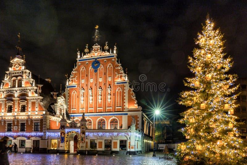 RIGA LETTLAND - DECEMBER 8, 2018: Riga julgran 2019 med huset av den pormask- och St Peter kyrkan royaltyfri bild
