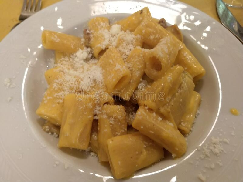 Rigatoni italian pasta alla carbonara royalty free stock photo