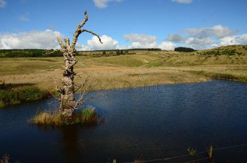 Rigenerazione acqua profonda di precedente sito a cielo aperto immagini stock