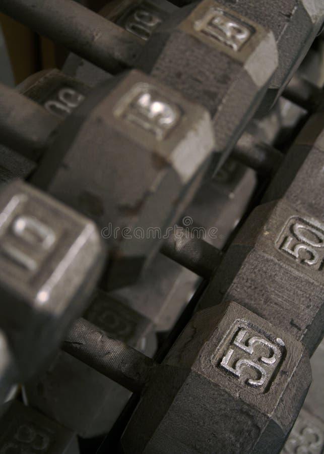 Righe di Freeweight Dumbells immagini stock
