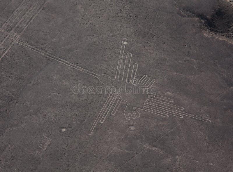 Righe di Nazca nel Perù fotografie stock libere da diritti