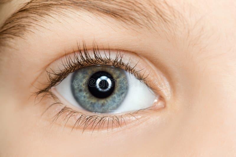 Right blue eye of child with long eyelashes royalty free stock images