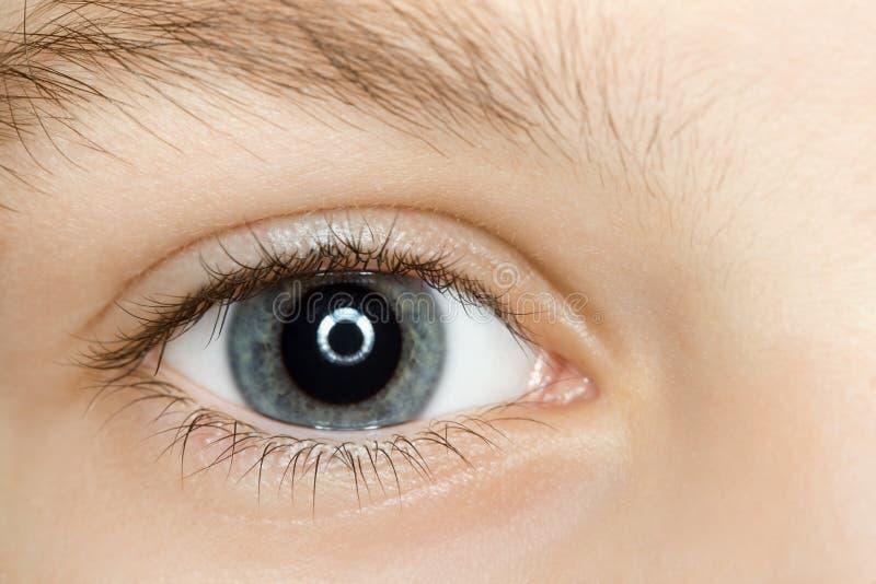 Right blue eye of child with long eyelashes royalty free stock photos