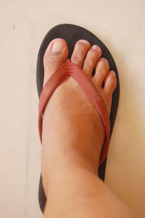 Right Feet Wearing Slipper royalty free stock photos