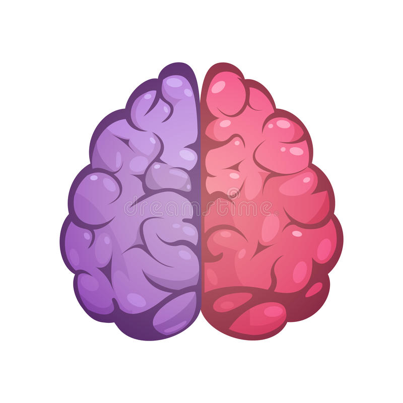 Right And Left Brain Symbolic Image vector illustration