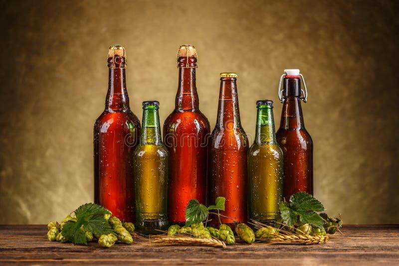 Rij van bierflessen stock afbeelding