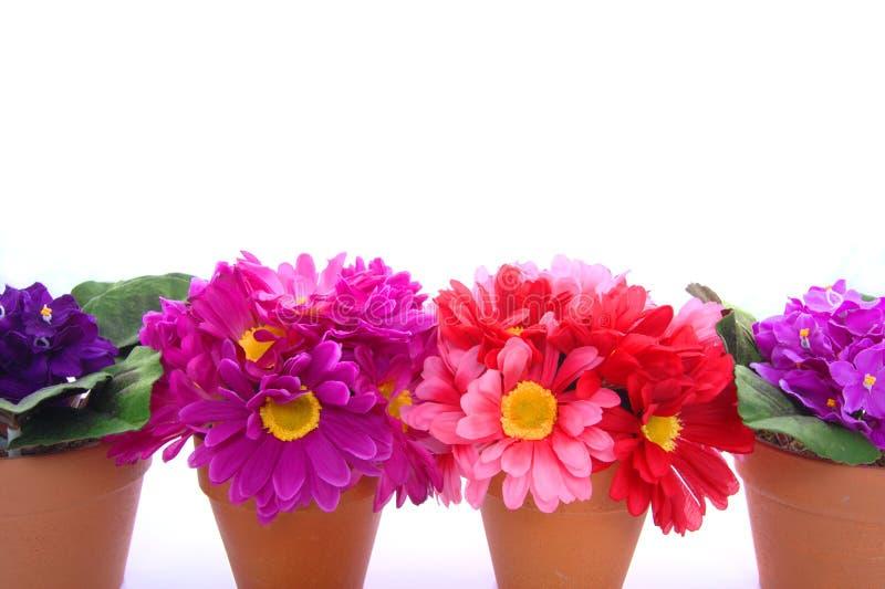 Rij van bloempotten stock afbeeldingen