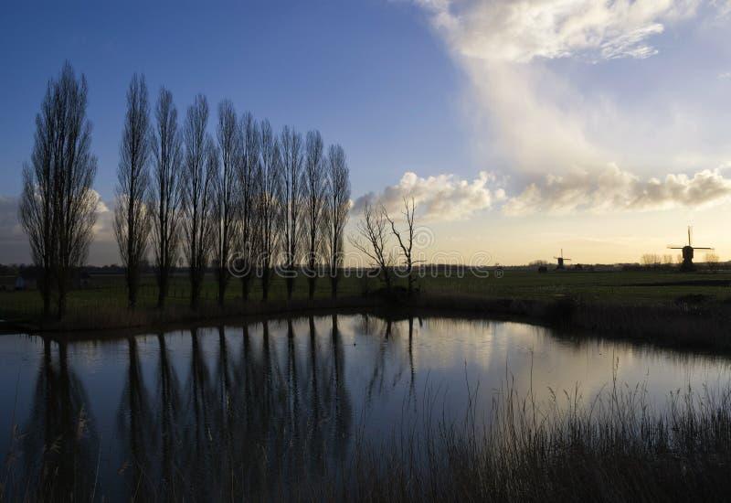 Rij van bomen dichtbij Uppel royalty-vrije stock afbeeldingen